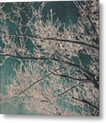 Ice Storm Branches - Blue Metal Print