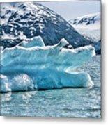 Iceberg Glacier Alaska  Metal Print