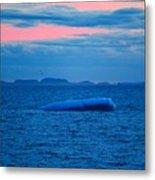 Iceberg Sunset Metal Print