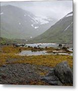 Iceland 36 Metal Print