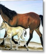 Icelandic Mare And Foal Metal Print