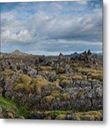Icelands Mossy Volcanic Rock Metal Print