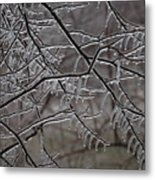 Icy Branches Metal Print