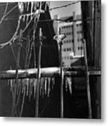 Icy Gates Metal Print
