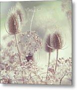 Icy Morning. Wild Grass Metal Print