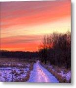 Icy Path Metal Print