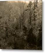 Icy Trees In Sepia Metal Print