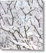 Icy Winter Scene Metal Print