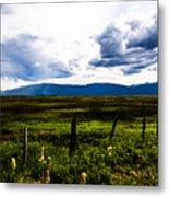 Idaho Field Metal Print