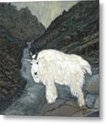 Idaho Mountain Goat Metal Print