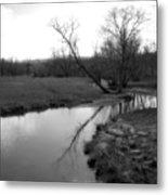 Idyllic Creek - Black And White Metal Print