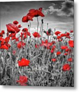 Idyllic Field Of Poppies Colorkey Metal Print