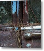 The Things I Could Tell You Metal Print