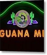 Iguana Mia Metal Print