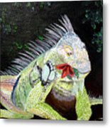 Iguana Midnight Snack Metal Print