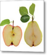 Illustration Of Apple And Pear Metal Print