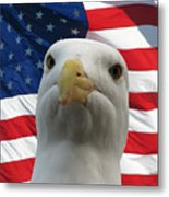 I'm An Eagle, Dammit -- Western Gull And American Flag Metal Print