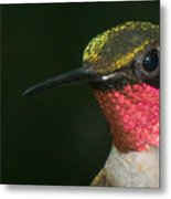 I'm Full Of Color Metal Print