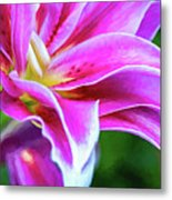 Immerse Yourself - Paint Metal Print