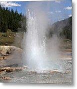 Imperial Geyser, Yellowstone Np Metal Print