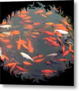 Imperial Koi Pond With Black Swirling Frame Metal Print
