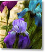 Impossible Irises Metal Print