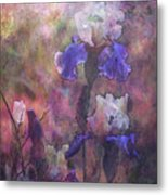 Impressionist Purple And White Irises 6647 Idp_2 Metal Print