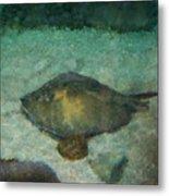 Impressionistic Sting Ray - 003 Metal Print