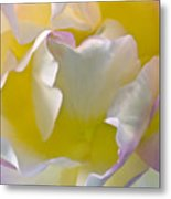Impressions From Heaven I Metal Print by Artecco Fine Art Photography