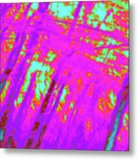 Impressions Of A Forest 4 Metal Print