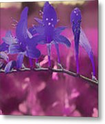 In A Pink World Metal Print