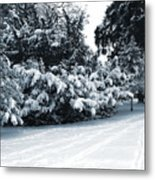 In A Winter Park Metal Print