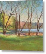 In Just Spring At Plug Metal Print