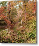 In Love With Autumn Metal Print