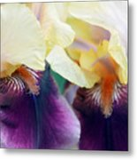 In Love With Iris Metal Print