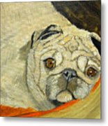 In My Dog Bed Metal Print