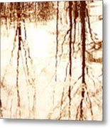 In Reflection Metal Print