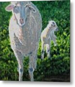 In Sheep's Clothing Metal Print