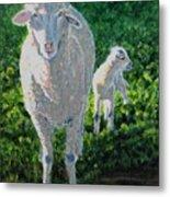 In Sheep's Clothing Metal Print