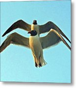 In Tandem At Sunset Metal Print