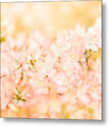 In The Arms Of Spring Metal Print