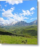 In The Back Country 2 Metal Print