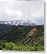 In The Back Country Metal Print