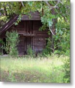 In The Back Woods Metal Print