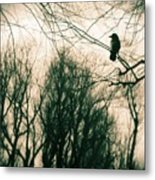In The Day Metal Print