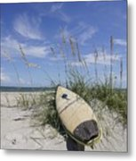In The Dunes Metal Print