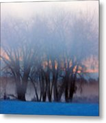 In The Fog At Sunrise Metal Print