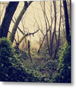 In The Forest Of Dreams Metal Print