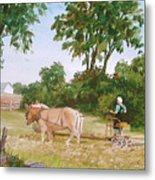 In The Hayfield Metal Print