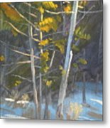 In The Lime Light Metal Print